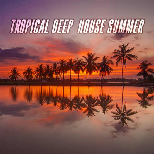 VA - Tropical Deep House Summer (2016)