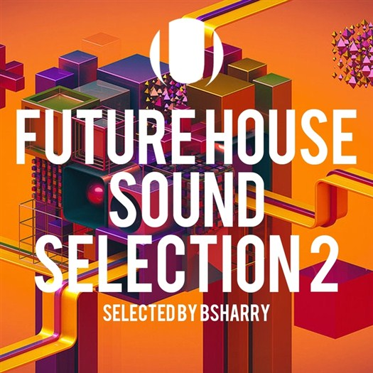 VA - Future House Sound Selection Vol 2 (Selected by Bsharry) (2016).