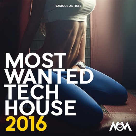 VA - Most Wanted Tech House 2016 (unmixed tracks)