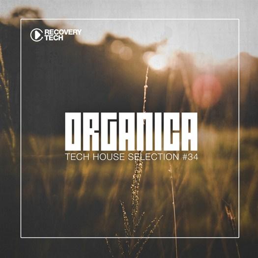 VA - Organica #34 (2016)