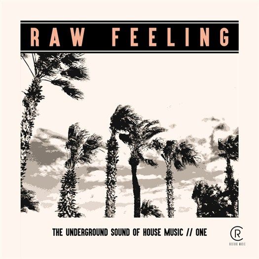 VA - Raw Feeling: The Underground Sound Of House Music Vol 1 (2016)