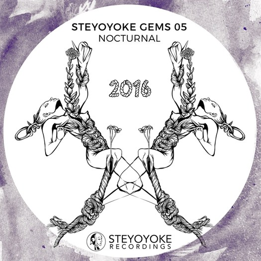 VA - Steyoyoke Gems Nocturnal 05 (2016)