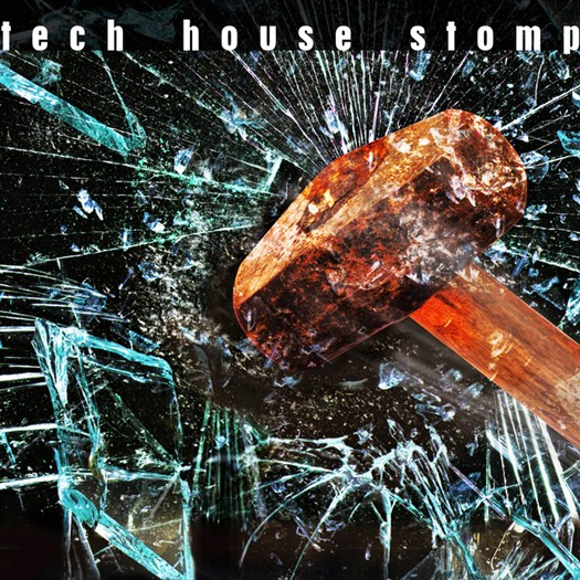 VA - Tech House Stomp (2016)