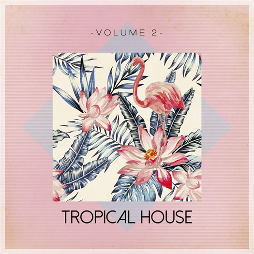 VA - Tropical House Vol 2 (2016)