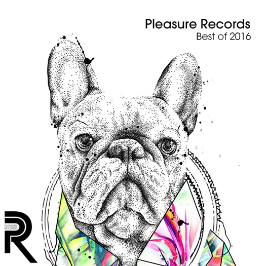 VA - Pleasure Records Best Of 2016