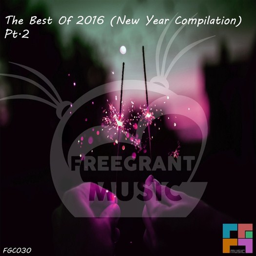 VA - The Best Of 2016 (New Year Compilation) Part 2