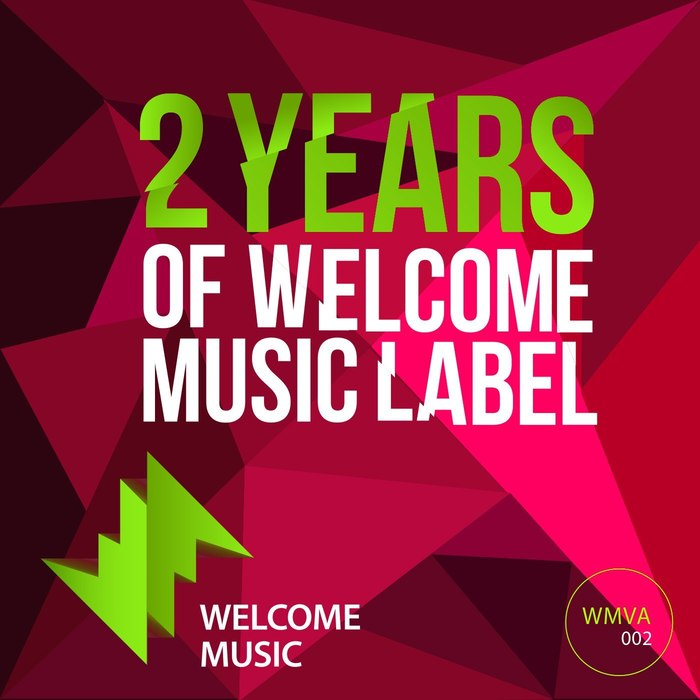 VA - 2 Years Of Welcome Music Label (2017)