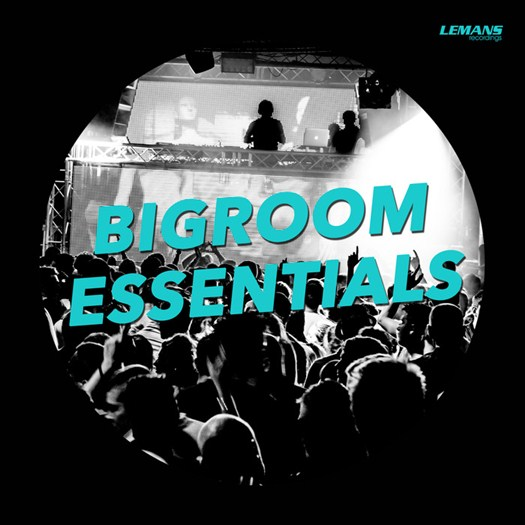 VA - Bigroom Essentials (2017)