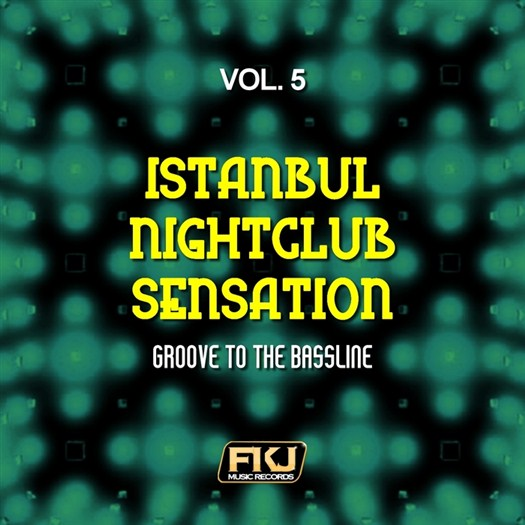 VA - Istanbul Nightclub Sensation Vol 5 (Groove To The Bassline) (2017)