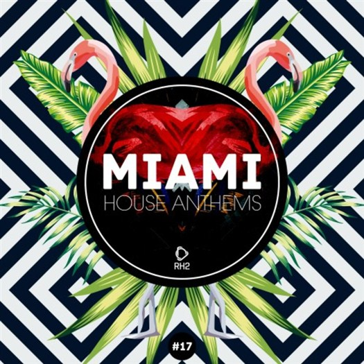 VA - Miami House Anthems Vol 17 (2017)