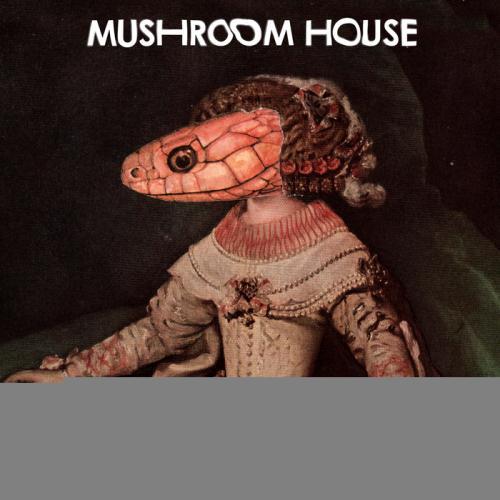 VA - Mushroom House EP3  (2017)