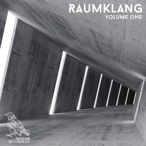 VA - Raumklang Vol 1 (2017)