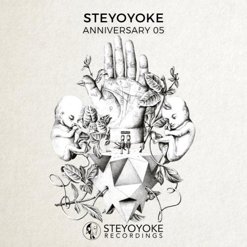 VA - Steyoyoke Anniversary Vol 5 (2017)