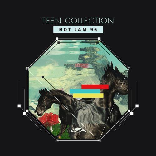 VA - Teen Collection Hot Jam 96  (2017)