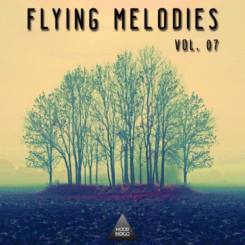 VA - Flying Melodies Vol 07 (2017)