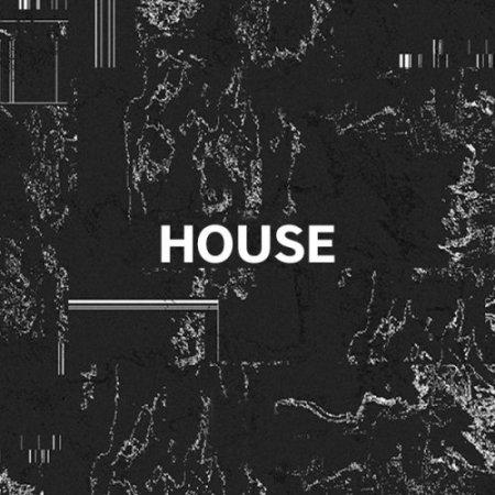 1494356455_opening-tracks-house