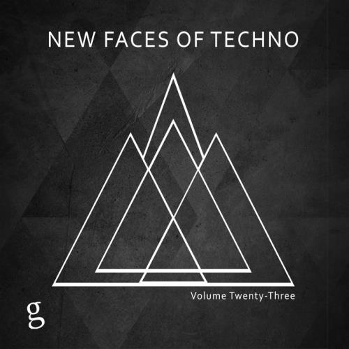 VA - New Faces Of Techno Vol 23 (2017)