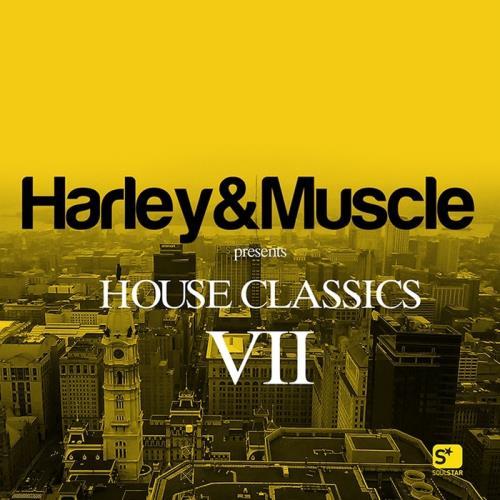 VA - House Classics VII (2017)