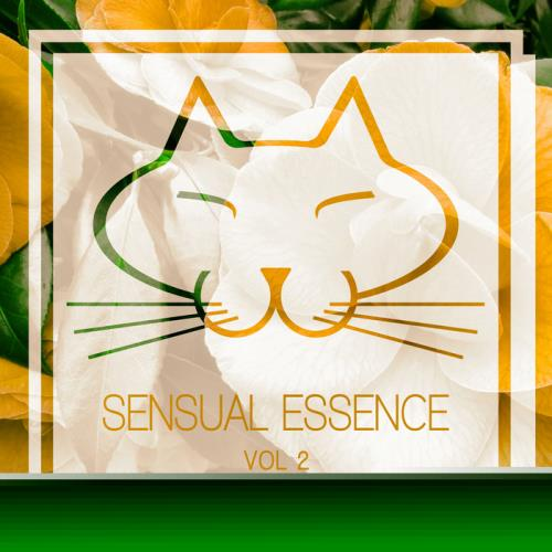 VA - Sensual Essence Vol 2 (2017)