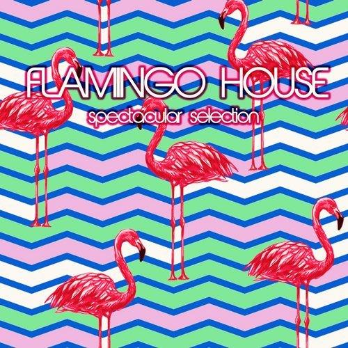 VA - Flamingo House Spectacular Selection [Extacy]