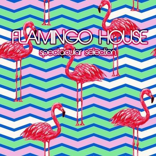 VA - Flamingo House Spectacular Selection [Extacy]