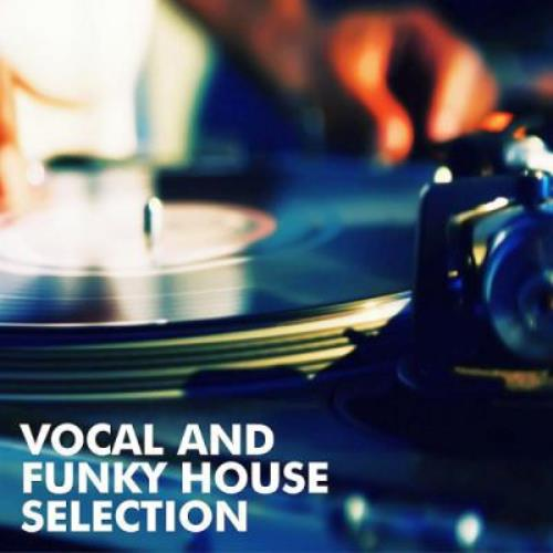 Va vocal and funky house selection 2017 320kbpshouse net for Funky house classics