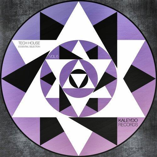 VA - Tech House Essential Selection, Vol.6 [Kaleydo Records]
