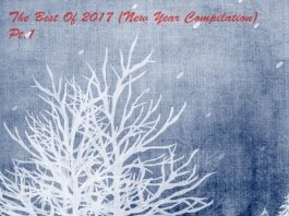 VA - The Best Of 2017 (New Year Compilation), Pt. 1 [Freegrant Music]