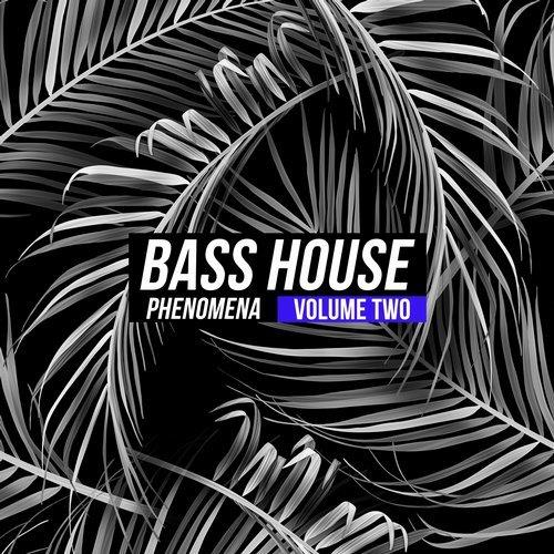 VA - Bass House Phenomena, Vol. 2 [Hugh Recordings]