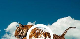 VA - L'Evoluzione Del Suono (Parte Terza) [Natura Viva In The Mix]