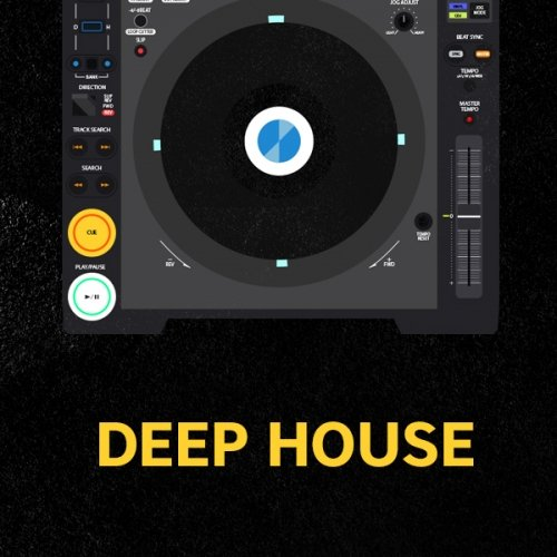 NEW YEAR'S RESOLUTION DEEP HOUSE