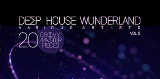 VA - Deep House Wunderland, Vol. 5 (20 Groovy Master Pieces) [REAL MAGIC]