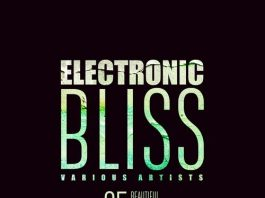 VA - Electronic Bliss (25 Beautiful Relaxed Anthems), Vol. 4 [Oriental Garden]