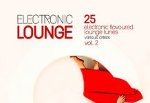 VA - Electronic Lounge (25 Electronic Flavoured Lounge Tunes), Vol. 2 [Back2Basics]