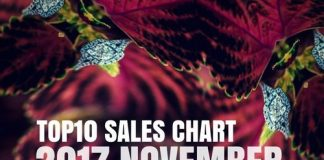 VA - TOP10 Sales Chart 2017 November [Stellar Fountain]