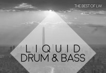 VA - Best of LW Liquid Drum & Bass II [LW Recordings]