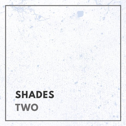 VA - Shades - Two [FEEL RAW]