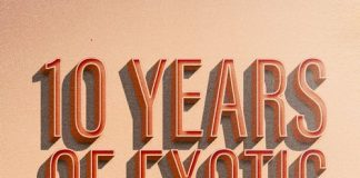 VA - 10 Years Of Exotic - Flashback Part 1 [Exotic Refreshment]