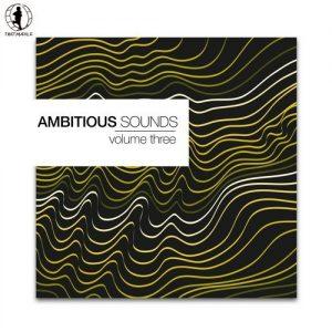 VA - Ambitious Sounds, Vol. 3 - The Deep Side of Tech-House [Tretmuehle]