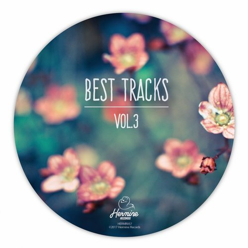 VA - Best Tracks, Vol. 3 [Hermine Records]