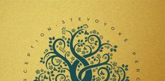 VA - Steyoyoke Perception, Vol. 2 [Steyoyoke]
