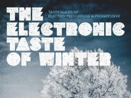 VA - The Electronic Taste of Winter (Tasty Slices of Electro-Tech-House & Progressive) [KNM]