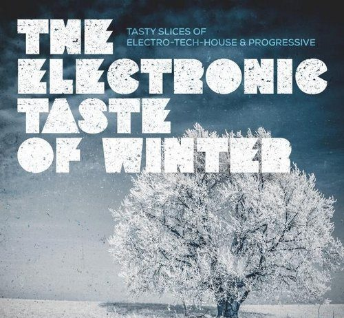 VA - The Electronic Taste of Winter (Tasty Slices of Electro-Tech-House & Progressive) [KNM]
