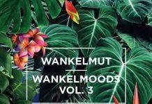 VA - Wankelmoods, Vol. 3 [Poesie Musik]