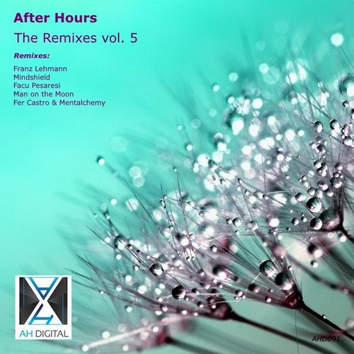 Download : VA - After Hours - the Remixes, Vol  5 [AH