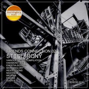 VA - Friends Connection, Vol. 2 Steel Irony [Morninglory Music]