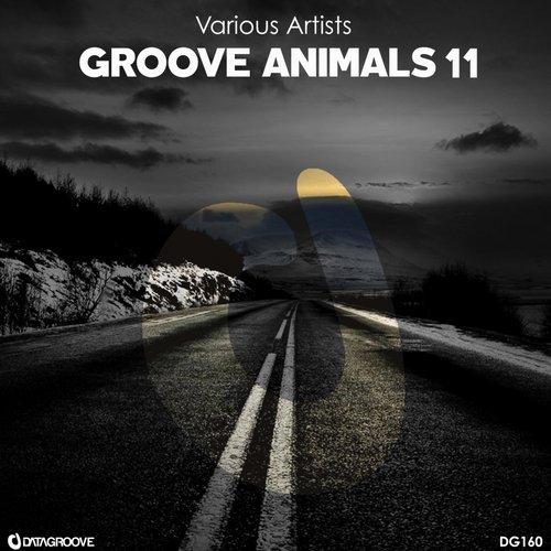 Va groove animals 11 datagroove music 320kbpshouse net for Groove house music