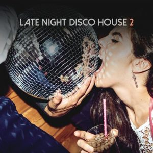 VA - Late Night Disco House, Vol. 2 [House Place Records]