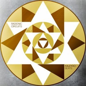 VA - Radionic Circuits, Vol.2 [Kaleydo Beats]