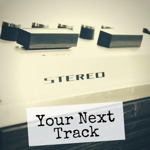 VA - Your Next Track, Vol. 17 [Gysnoize Recordings]